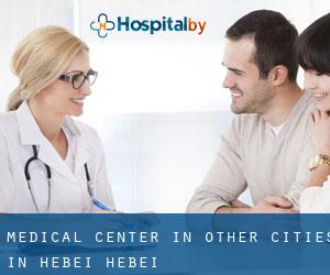Medical Center in Other Cities in Hebei (Hebei)