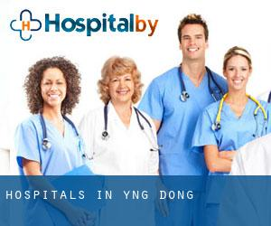 hospitals in Yŏng-dong