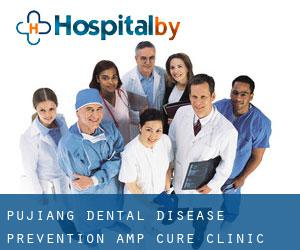 Pujiang Dental Disease Prevention & Cure Clinic (Puyang)